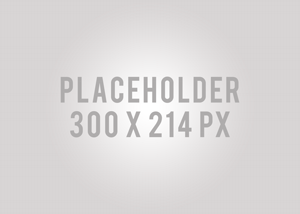 Product Image Placeholder