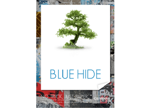 Guyenne Blue Hide